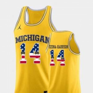 Men's U of M #14 Rico Ozuna-Harrison Yellow USA Flag College Basketball Jersey 225507-933