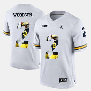 For Men Michigan Wolverines #2 Charles Woodson White Player Pictorial Jersey 648176-792