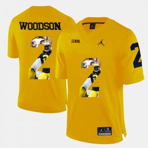 Men's Michigan #2 Charles Woodson Yellow Player Pictorial Jersey 700593-328